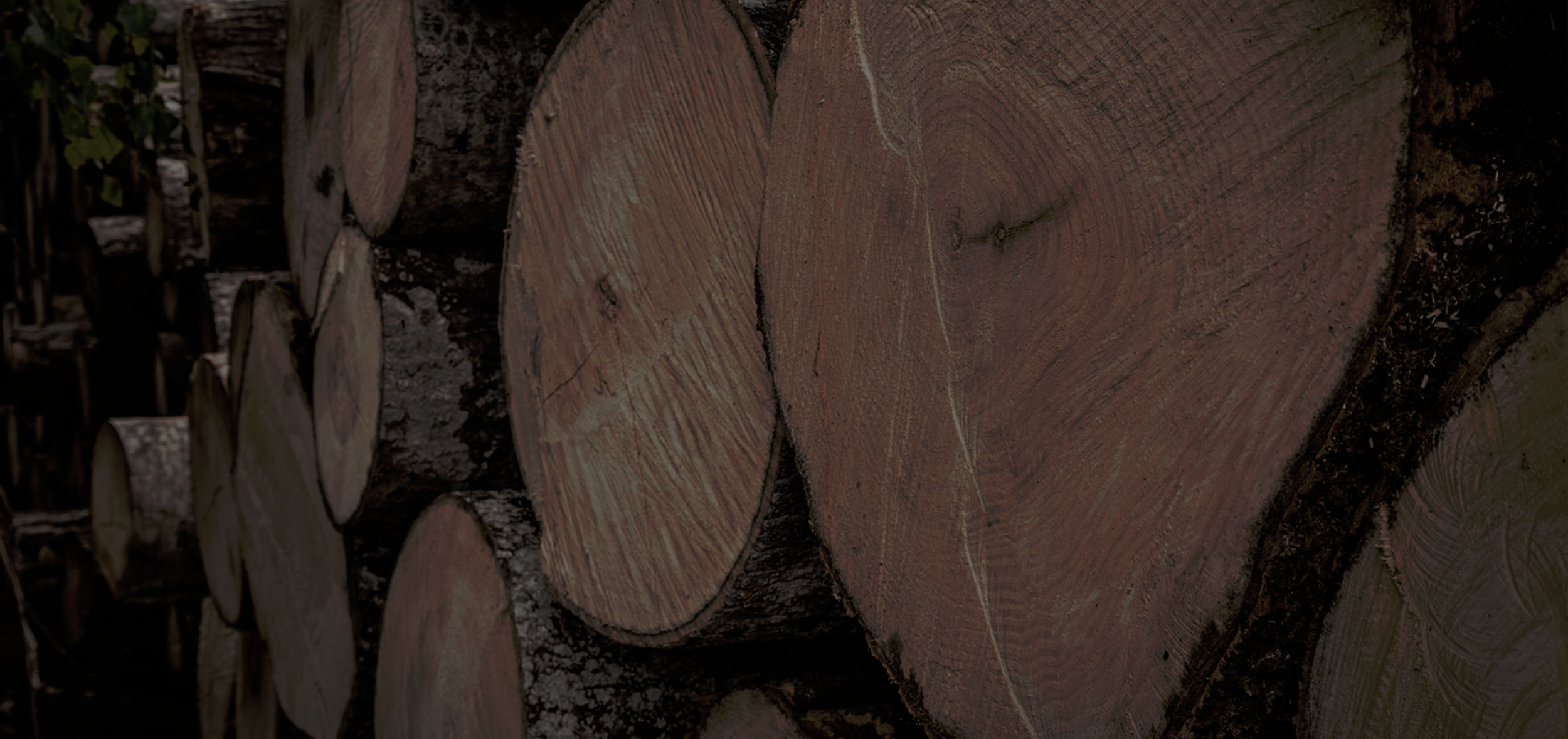 log and timber merchant