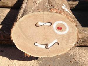 Rift log